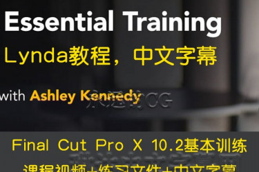 Lynda教程/Final Cut Pro X 10.2 Essential Training/中文字幕