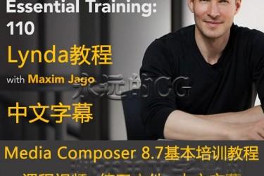 Avid Media Composer 8.7基本培训教程110/进阶教程/中文字幕