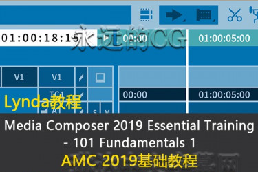Media Composer 2019 Essential Training 101/Avid AMC 2019基础入门教程/中英文字幕/lynda教程